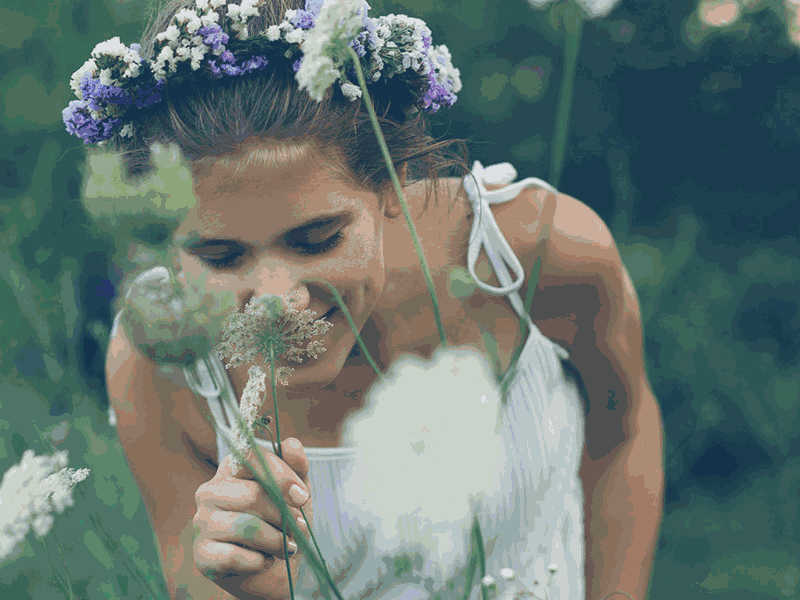The Meaning and Power of Smell