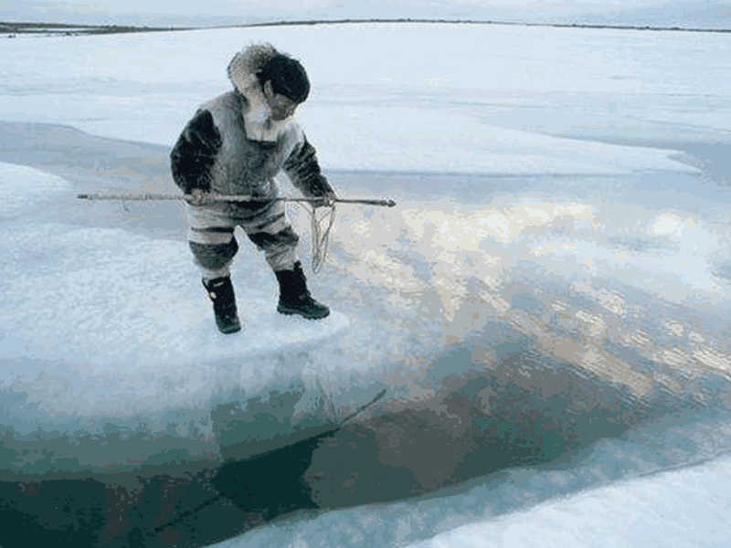 Climate Change and the Inuit