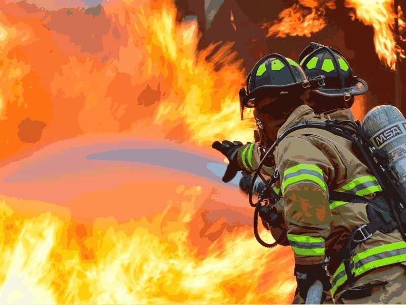 红Delta-Test2听力The Impact of Fire on Biodiversity原文文本答案解析+音频录音mp3【小站托福备考】