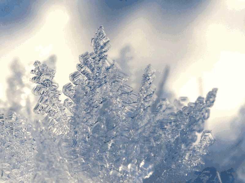红Delta-Test6听力The Formation of Ice原文文本答案解析+音频录音mp3【小站托福备考】